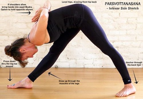 Large making ashtanga primary accessible